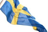 ola-ericson-the-swedish-flag-359
